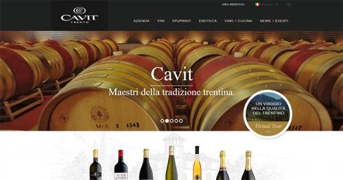 Sito web Cavit