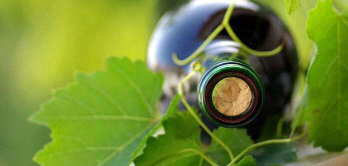 Viticoltura eroica e vitigni autoctoni