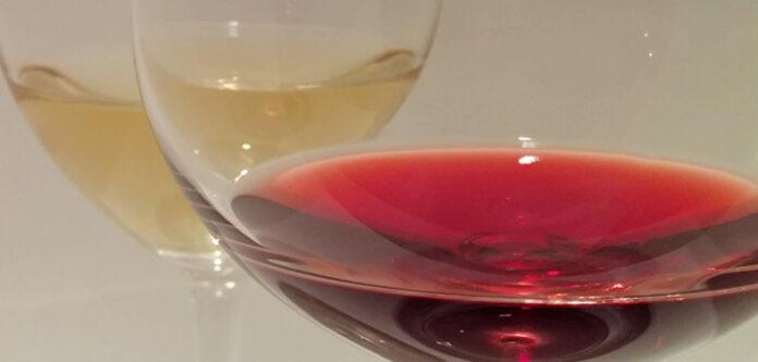 Degustazione vini