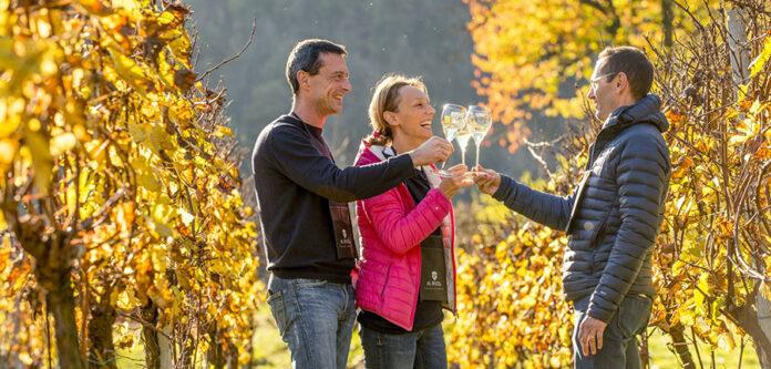 Al Rocol Wine trekking con Cuvée