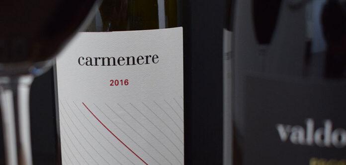 Degustazione vini Vigna Dogarina