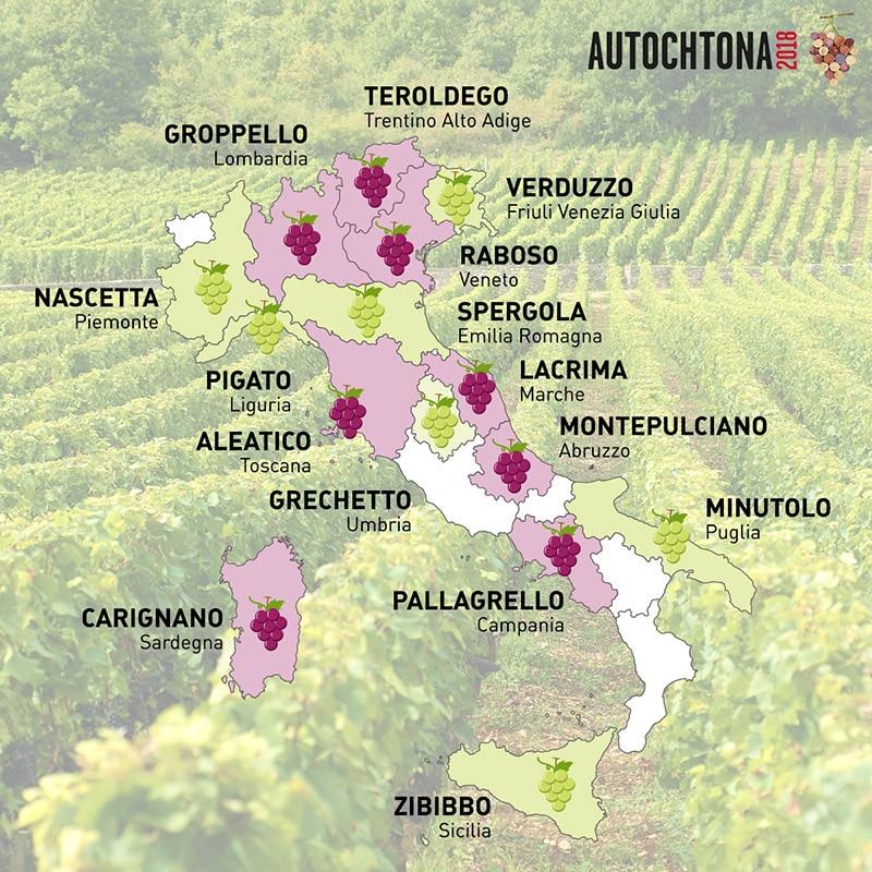 Cartina Italia Vitigni Autoctoni