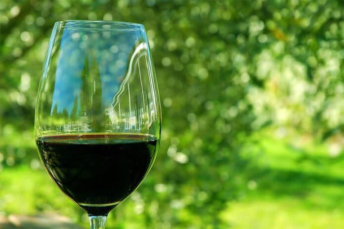 vini di montagna