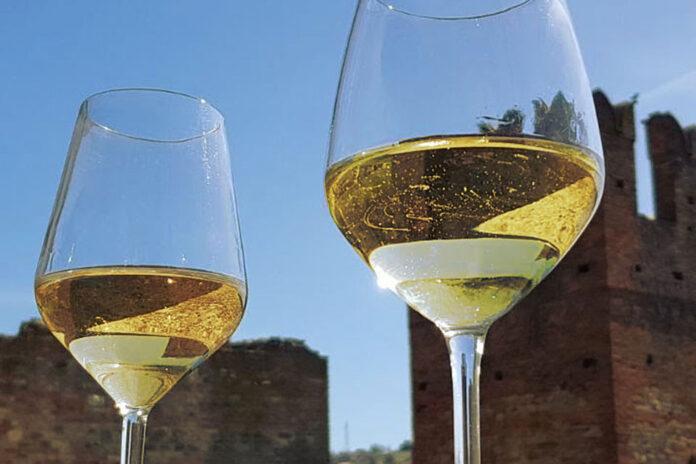 Monterosso Vino DOC