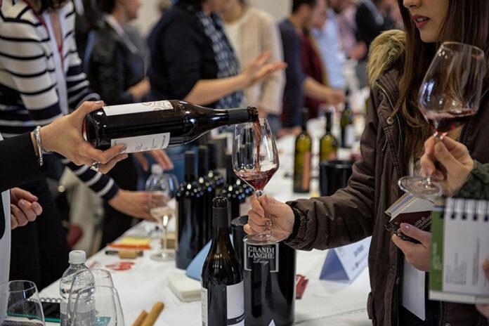 degustazione vini di langa