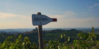 Walk of Barolo Rivetto