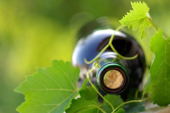 vino da agricoltura sostenibile