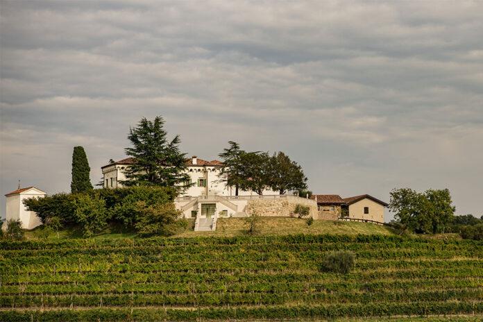 Cantina Torre Rosazza